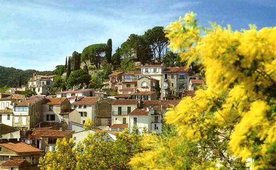 Bormes-les-Mimosas_Village-fleuri